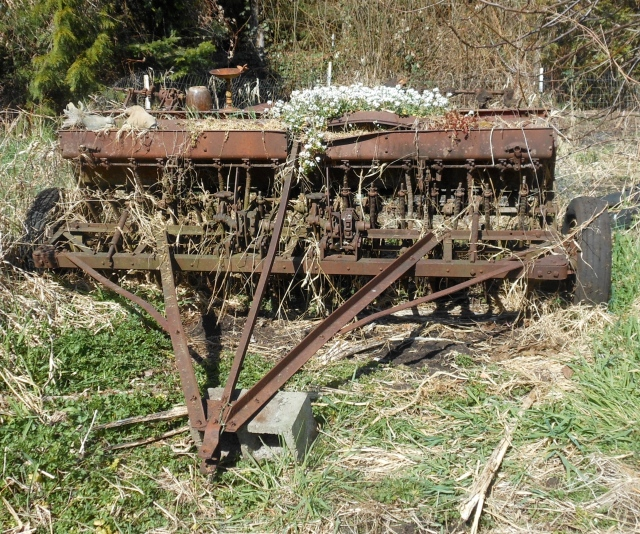 seed drill in place