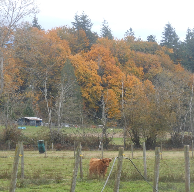 10 OCT Maddie with trees