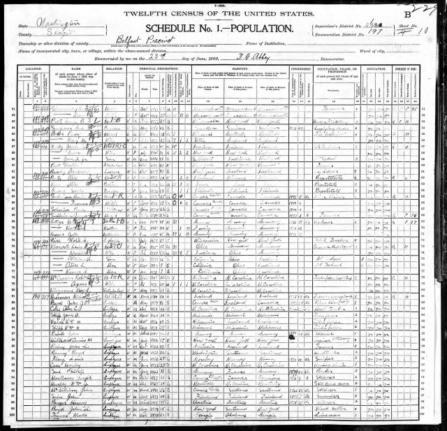 1900 census for belfast page 3