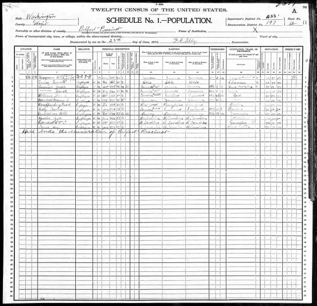 1900 census for belfast page 5