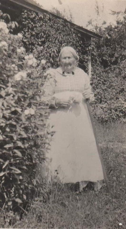 Next picture is my gr gr gr grandmother Catherine Burgoyne standing by some hops plants.