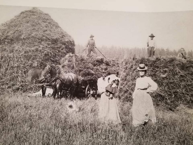 The next picture is the hay part, in early 1900's. Pictured are Eric Buss, Phoebe Sullivan, Johnny Sullivan, Frances Shassy, and mr. Brennon