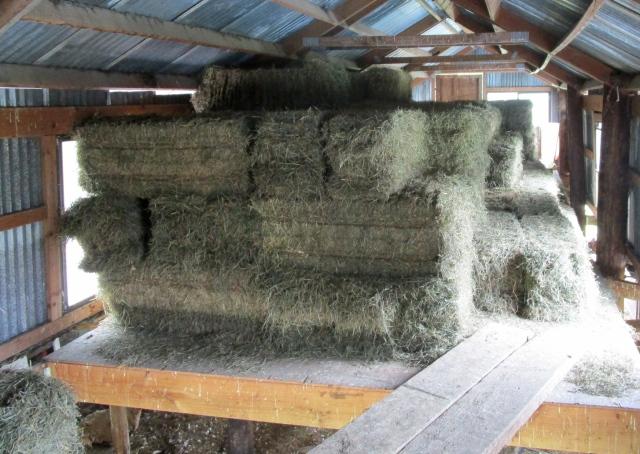 hay loft hay
