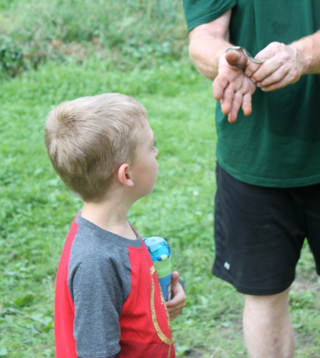 Tom showing William a baby snake