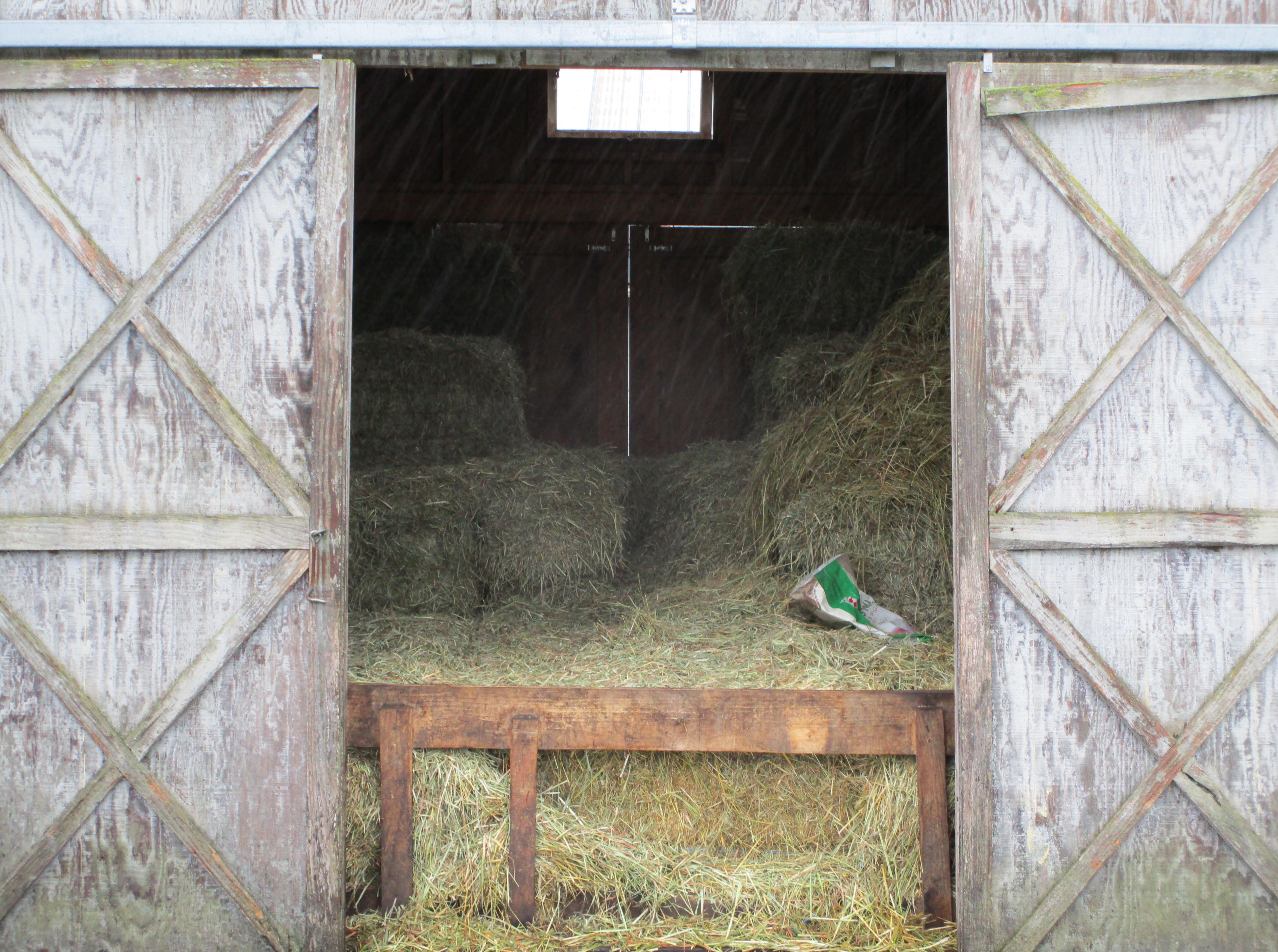 February farm
