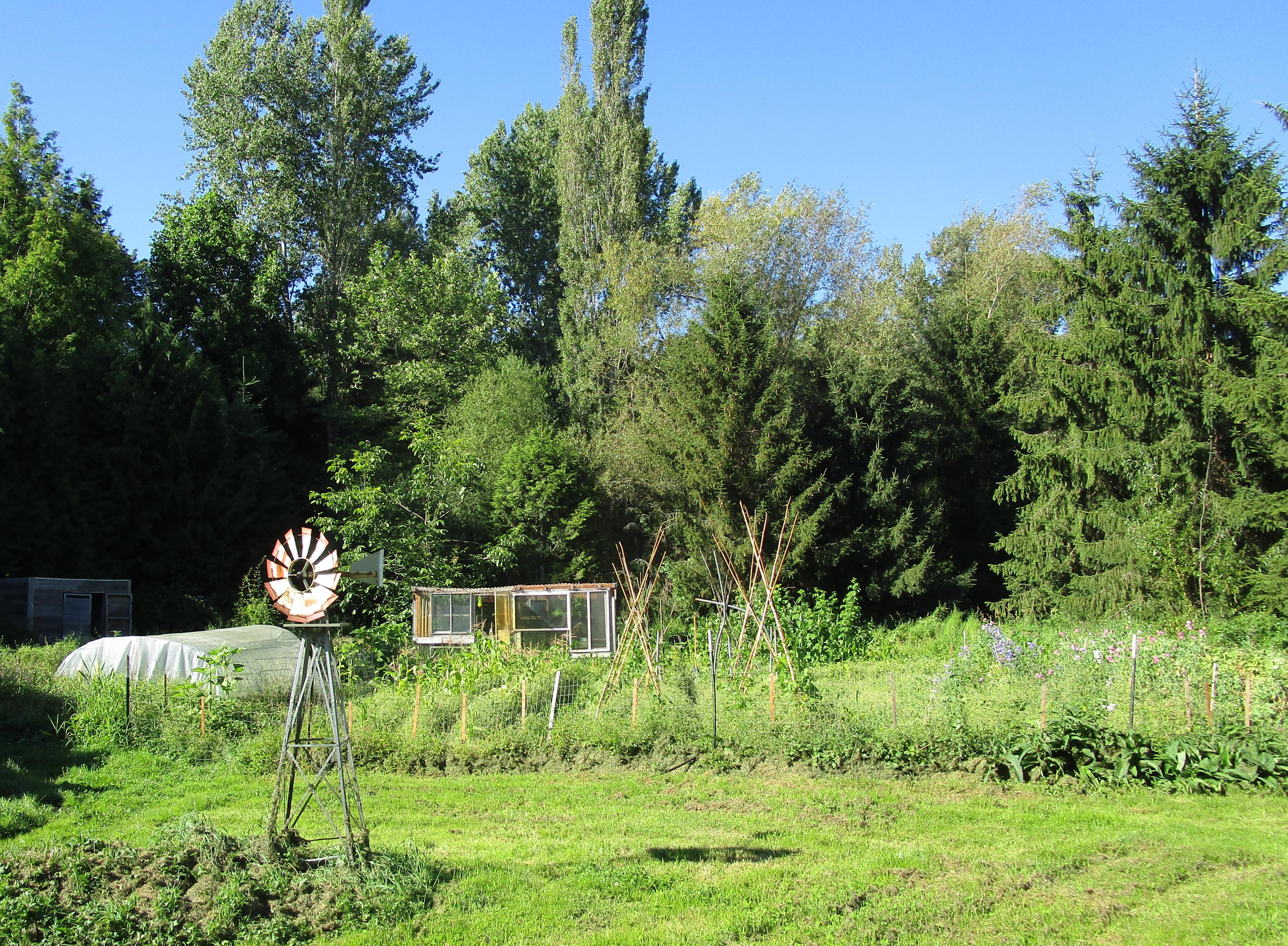 July1 farm garden 2