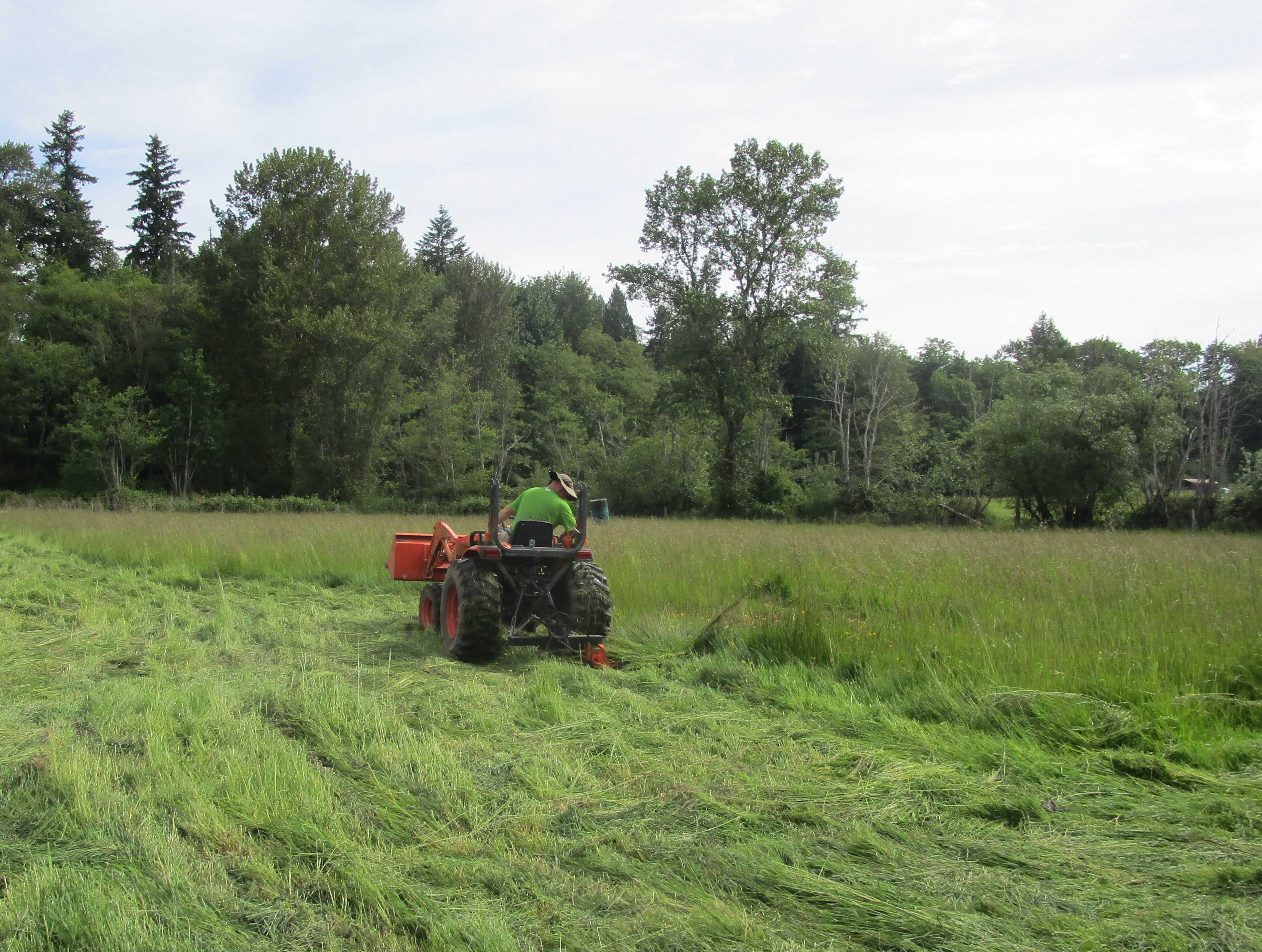 June1 farm
