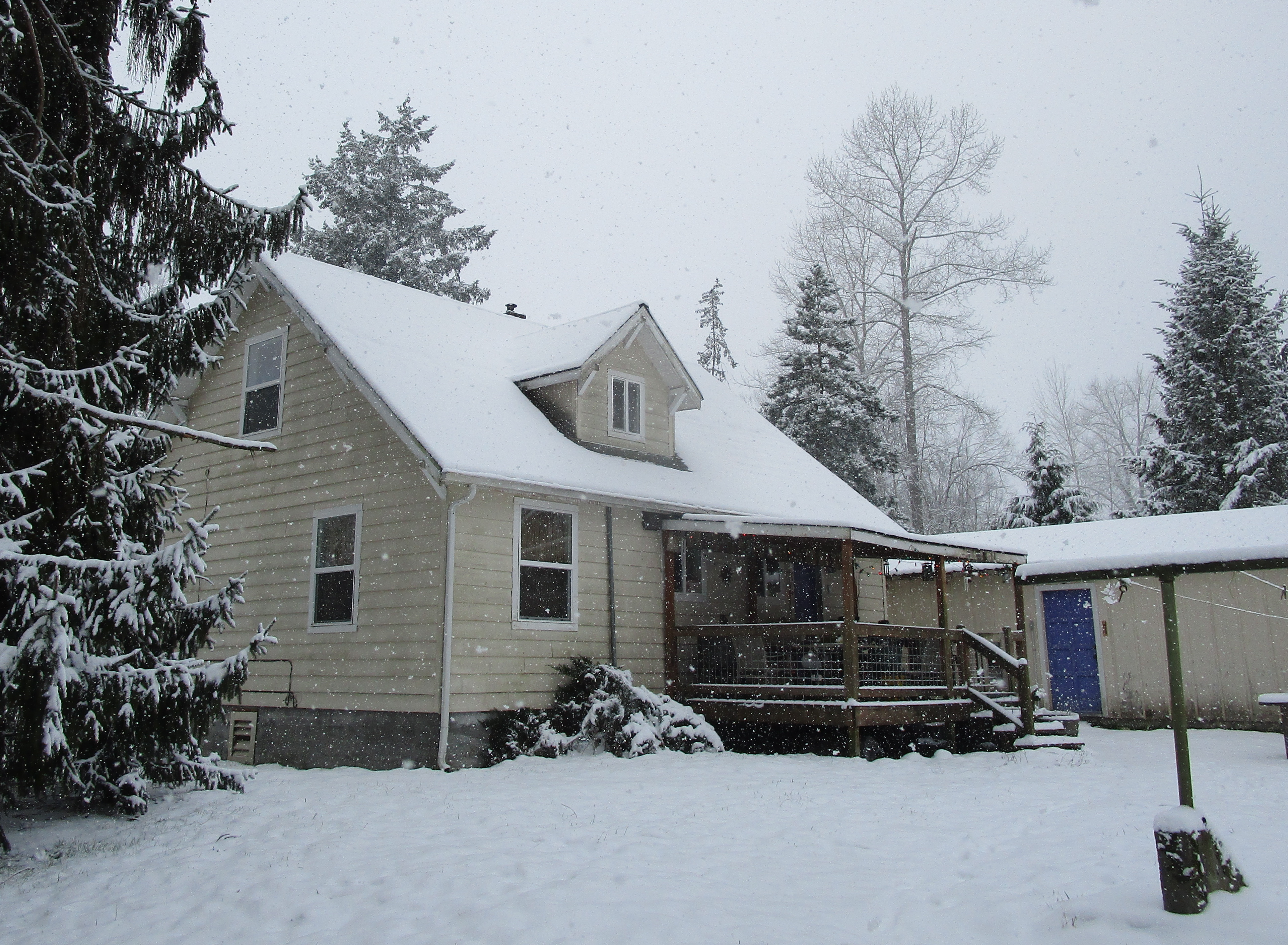 snowy back of house