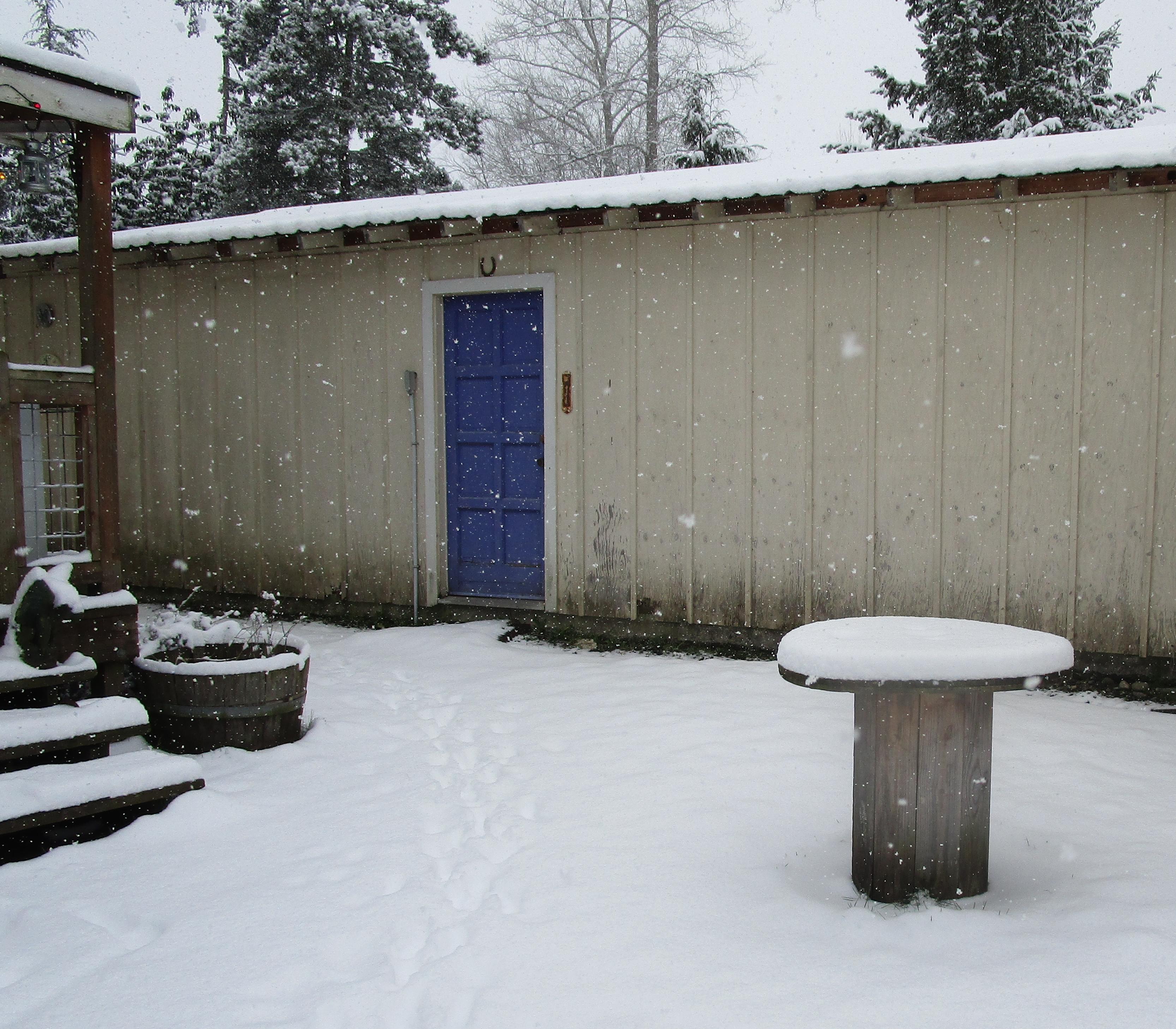 snowy spool