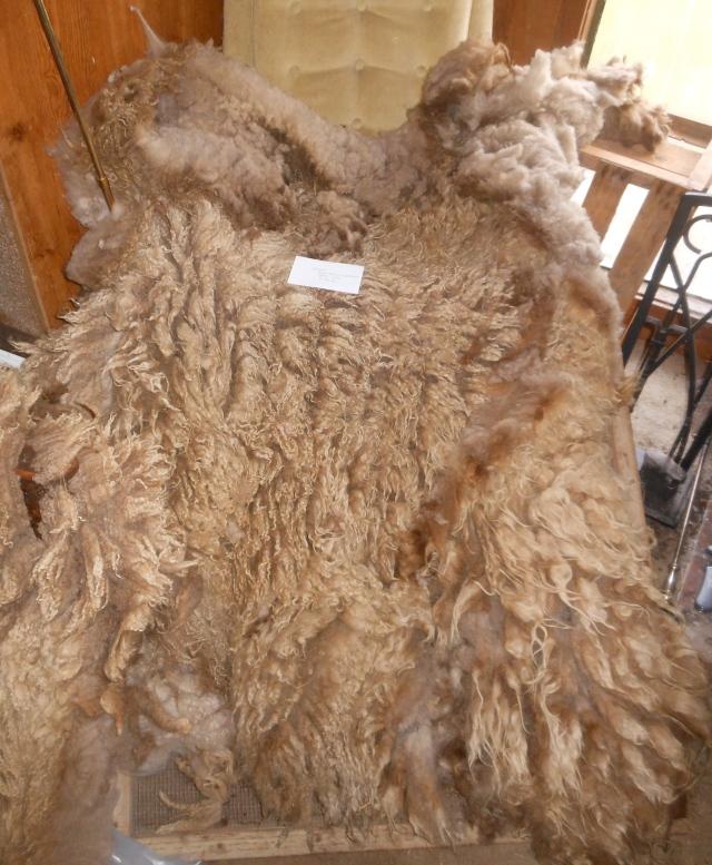Wendel fleece