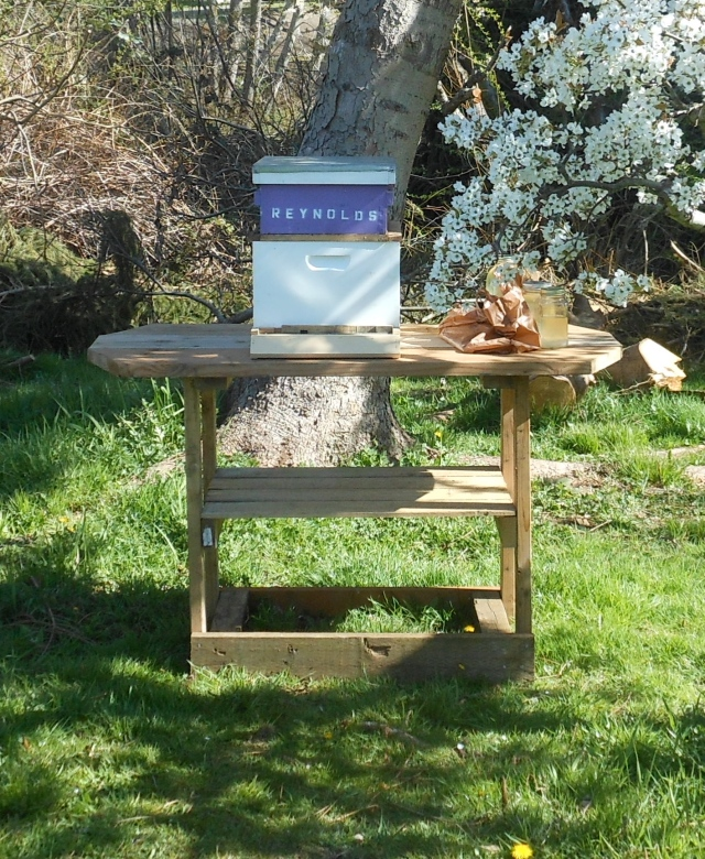 hive table