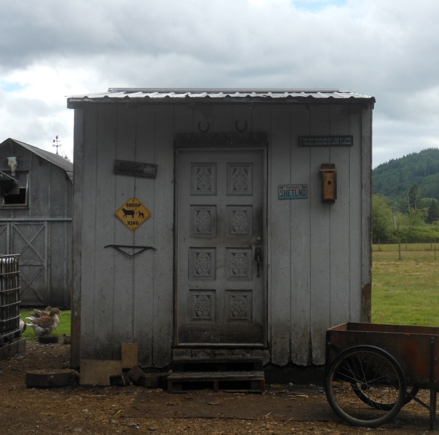 front of feed shed_2
