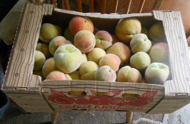 box o peaches