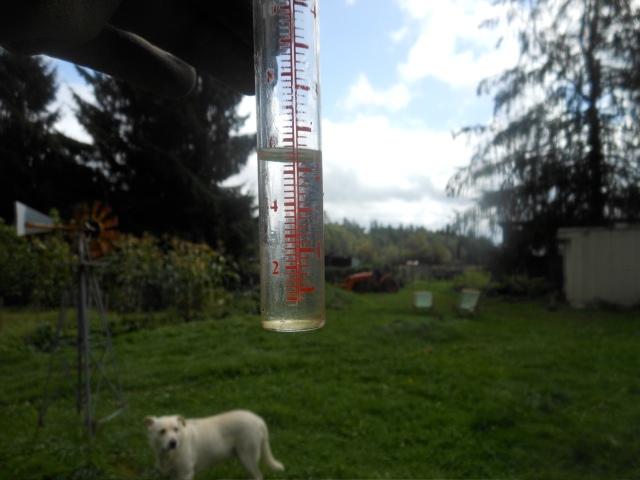 2 inches of rain